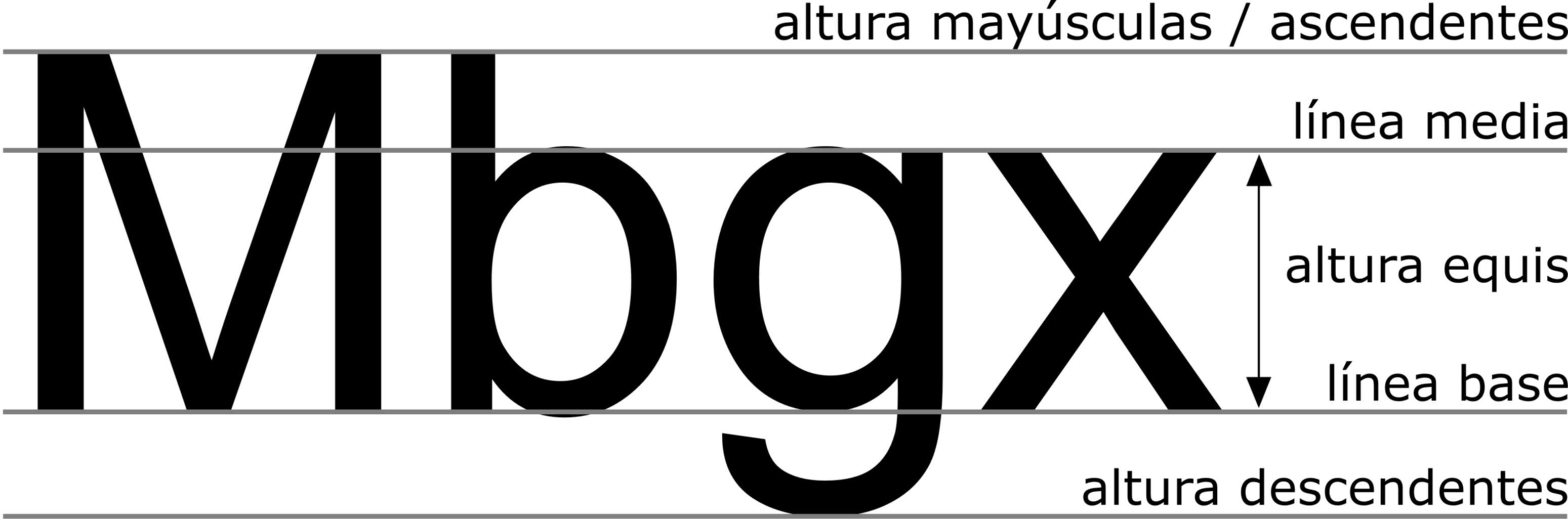 UD 4: Anatomía del tipo. | Tipografía Alopécica
