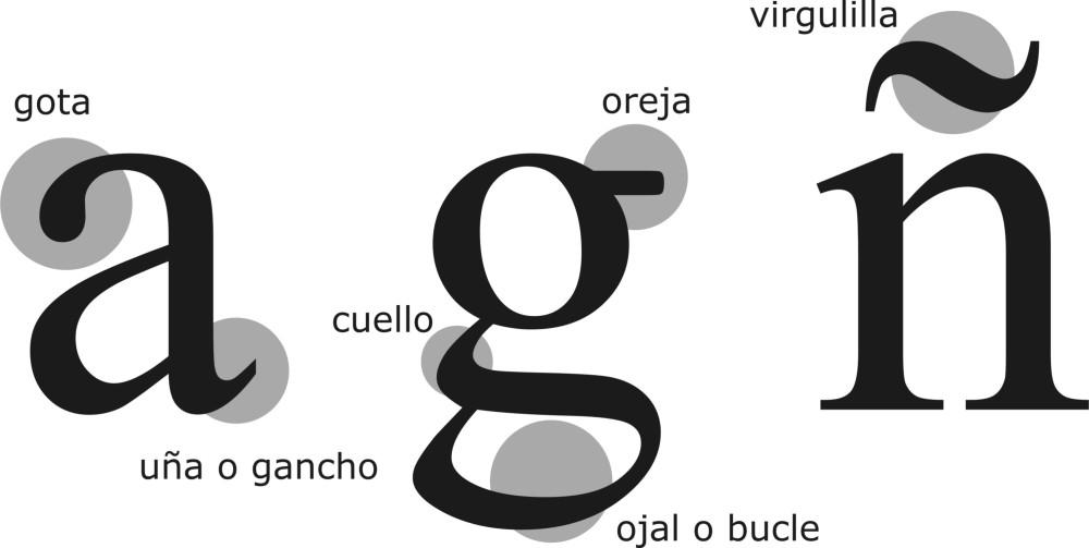 Clasificación tipográfica (6/6)